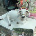 Krishna Cow Statue
