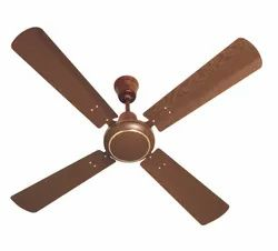Woodster Ceiling Fans (Havells)