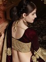 Fancy Imported Fabric Saree