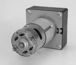 Permanent Magnet Brushed DC Geared Motor DC42GBV, IP Rating: 20