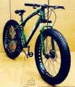 Prime Green Fat Tyre Cycle