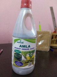 Amla Wheatgrass Juice
