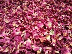 Pink Rose Petals - Rosa Indica - Gulab Patti