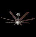 Special Finish Ceiling Fan