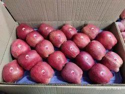 A Grade Kulu Apple, Packaging Size: 20 kg