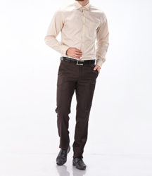 Formal Wear Printed Shirt