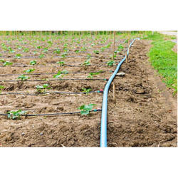 2000 Sqm Drip Irrigation Kit