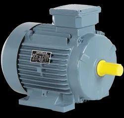 Three Phase Induction Motor, IP Rating: IP55