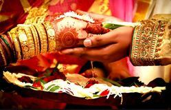 Male And Female Both 1month Matrimonial Services