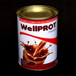 Wellprot Protein Powder (Chocolate Flavour)