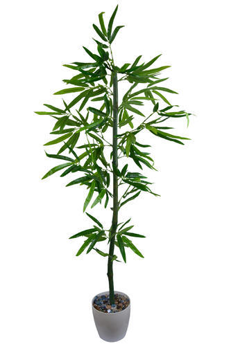 artificial bamboo tree - indoor plant - the fancy mart, mohali | id Artificial Indoor Flowers