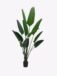 GH/T-32 Plant