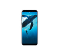Samsung Galaxy S8 Plus Phones