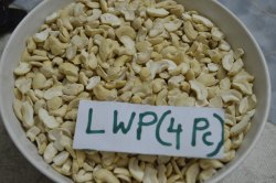 White Natural Broken Cashew LWP ( 4 Piece Cashew), Packaging Type: Polyethe Pack, Packaging Size: 10 Kg