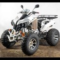 Prime ATV 250cc Motorcycle