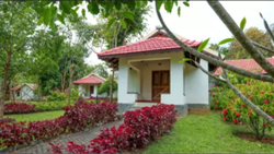 Deluxe AC Cottage Rental Service