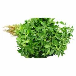Maha Shakti Fenugreek Leaves, 1 Kg, Packaging: Poly Bag