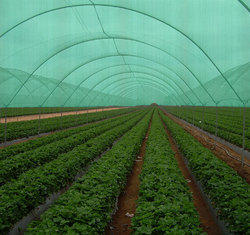 Agricultural Net