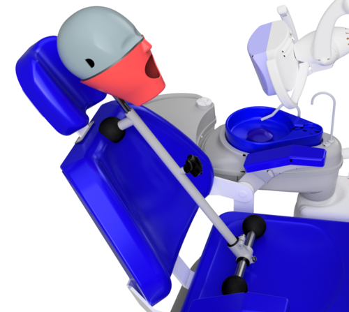 Manual Isim Dental Chair Mount Phantom Head / Manikin, Dental Training