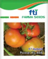 F1 Hybrid Tomato Seeds