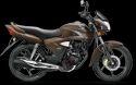 Honda Shine 125cc Bike