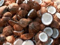 B Grade Whole Coconut, Packaging Size: 20 Kg, Coconut Size: Medium