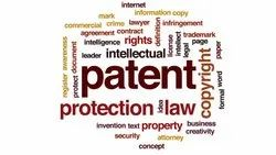 International Patent License, Application Type: Organization/Office
