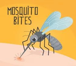 in Commercial Chemical Treatment Mosquito Control Service, in Pan india