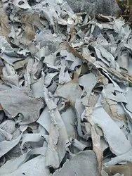 White Leather Scrap For Machine Polishing