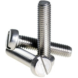 SS Slotted Cheese Screw