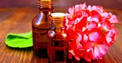 Pure Natural Geranium Oil