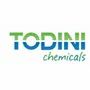 Todini Metals And Chemicals India Pvt Ltd