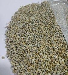 Agro Seed