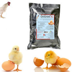Egg Production (Poultry Feed Supplement)