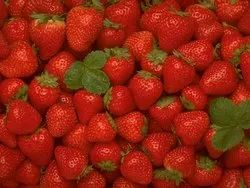 Canned Strawberries