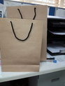 Craft Paper Carry Bag