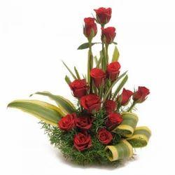 Amazing Red Roses