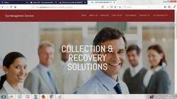 Collections Receivables Management