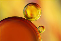 General Purpose Machinery Oils