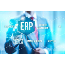 1 Month To 6 Months English Fraxinus ERP Solutions Service