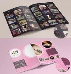 Brochures Flyer Design Services