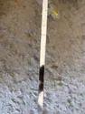 Steel Pipe 304