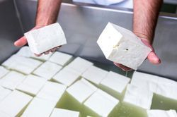 Paneer Testing Services