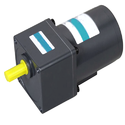 Reversible AC Geared Motor