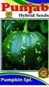 Natural Green Pumpkin Seeds (kaddu), Packaging Size: 100 Gm, Packaging Type: 100 Gm