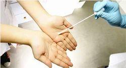 Swab Testing Services