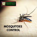 Fogging Service For Mosquitoes Control