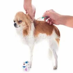 Veterinary Products Testing Services