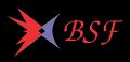 BS Projects Private Limited