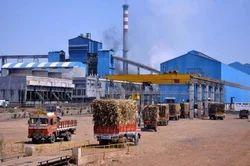 Sugar Plant Consultancy